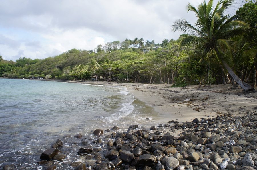Photo de la plage de Anse Azérot