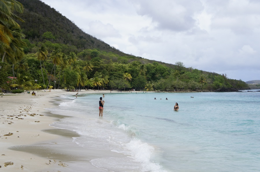 Photo de la plage de Anse Figuier