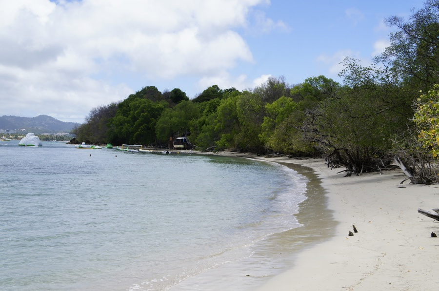 Photo de la plage de Anse Caritan