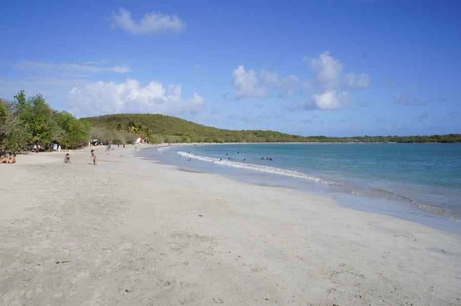 Photo de la plage de Anse Meunier (Anse Moustique)