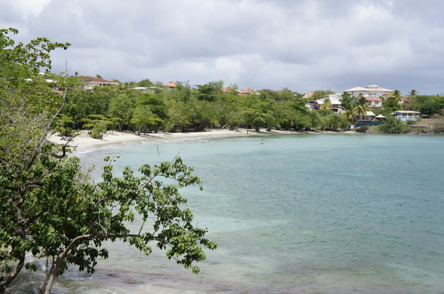 Photo de la plage de Anse Mabouya