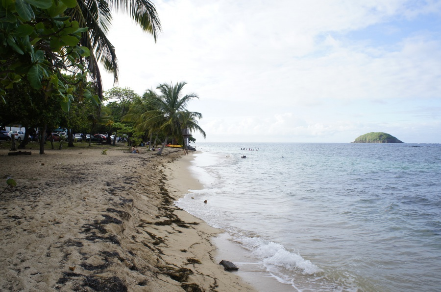 Photo de la plage de Anse Cosmy
